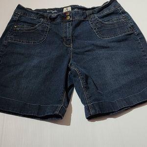 d/c Jeans Shorts Curvy Galbée  Women size 20 EE
